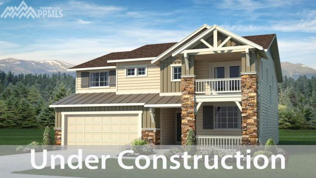 15715 Blue Pearl Court, Monument, CO 80132 (#6366134) :: Fisk Team, RE/MAX Properties, Inc.