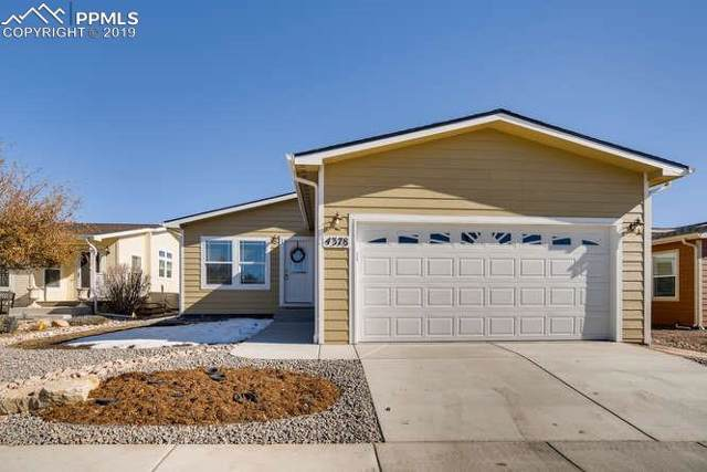 4378 Gray Fox Heights, Colorado Springs, CO 80922 (#6369714) :: Fisk Team, RE/MAX Properties, Inc.