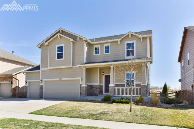 1334 Diamond Rim Drive, Colorado Springs, CO 80921 (#6373643) :: Action Team Realty