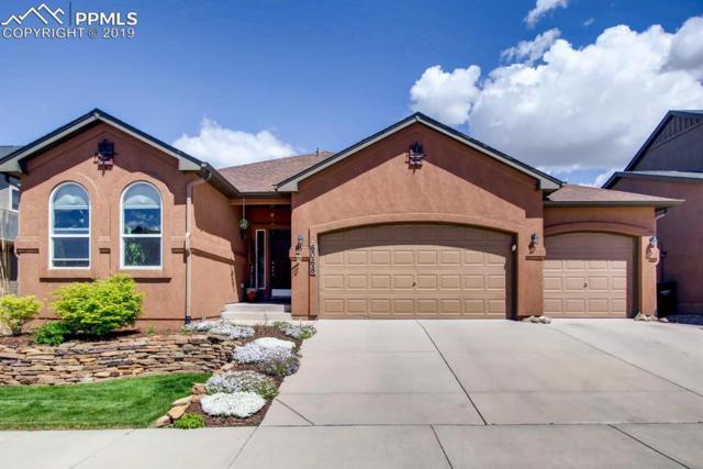 6068 Revelstoke Drive, Colorado Springs, CO 80924 (#6375885) :: The Treasure Davis Team