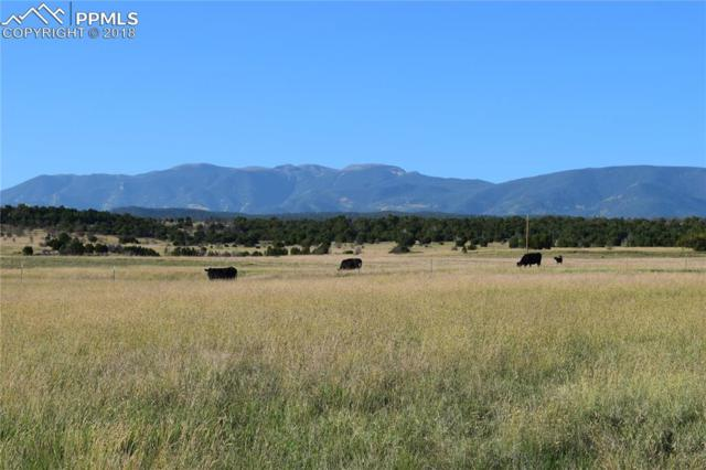 Simonson Road, Beulah, CO 81023 (#6377100) :: Jason Daniels & Associates at RE/MAX Millennium