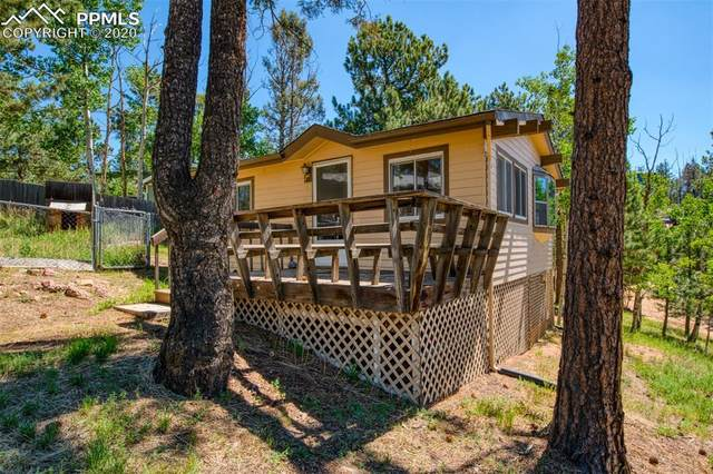 47 Honeysuckle Road, Woodland Park, CO 80863 (#6377971) :: Tommy Daly Home Team