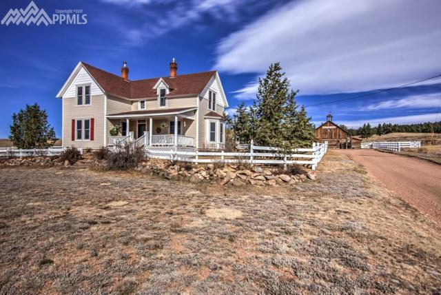1465 County 31 Road, Florissant, CO 80816 (#6385818) :: 8z Real Estate