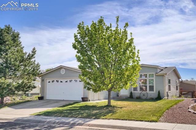 4115 Gray Fox Heights, Colorado Springs, CO 80922 (#6386096) :: The Daniels Team