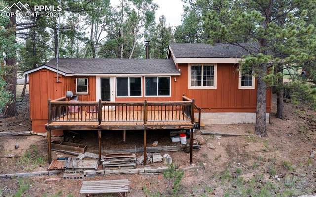 108 Alpine Road, Woodland Park, CO 80863 (#6388828) :: Finch & Gable Real Estate Co.