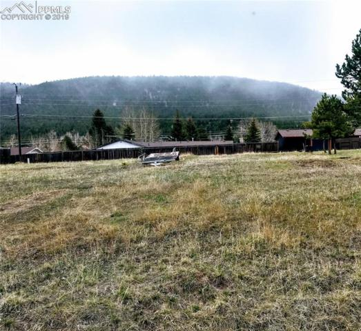 1013 N Baldwin Street, Woodland Park, CO 80863 (#6392206) :: Perfect Properties powered by HomeTrackR