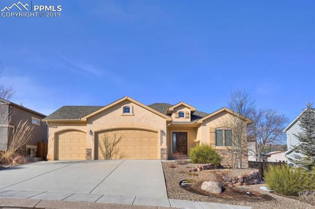 2230 Courtney Drive, Colorado Springs, CO 80919 (#6393208) :: The Treasure Davis Team