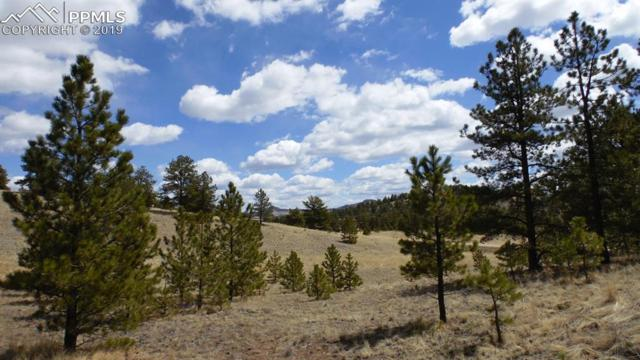 4499 County 102 Road, Guffey, CO 80820 (#6395652) :: Action Team Realty