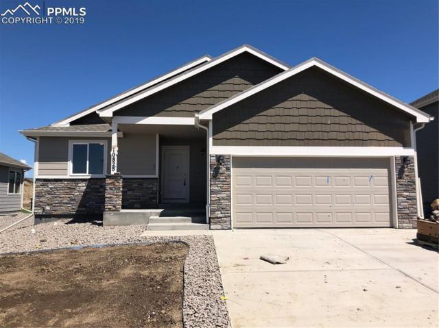 10828 Saco Drive, Colorado Springs, CO 80925 (#6398515) :: Perfect Properties powered by HomeTrackR
