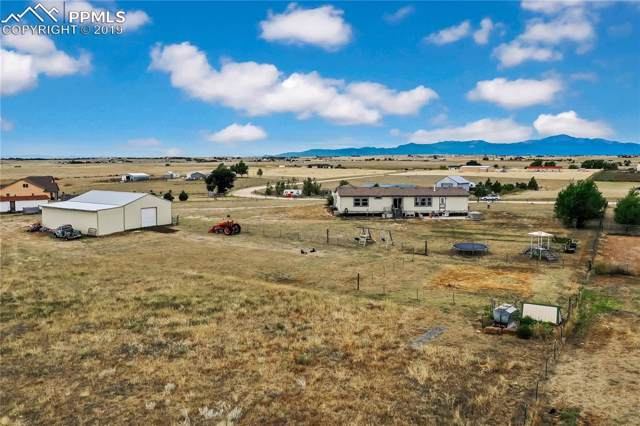 16445 Cathys Loop, Peyton, CO 80831 (#6405930) :: 8z Real Estate
