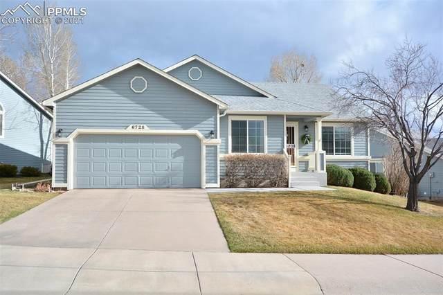 6728 Showhorse Court, Colorado Springs, CO 80922 (#6409546) :: Venterra Real Estate LLC