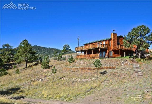 571 Coyote Drive, Guffey, CO 80820 (#6410896) :: 8z Real Estate