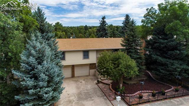 6685 Brook Park Drive, Colorado Springs, CO 80918 (#6410900) :: The Harling Team @ Homesmart Realty Group