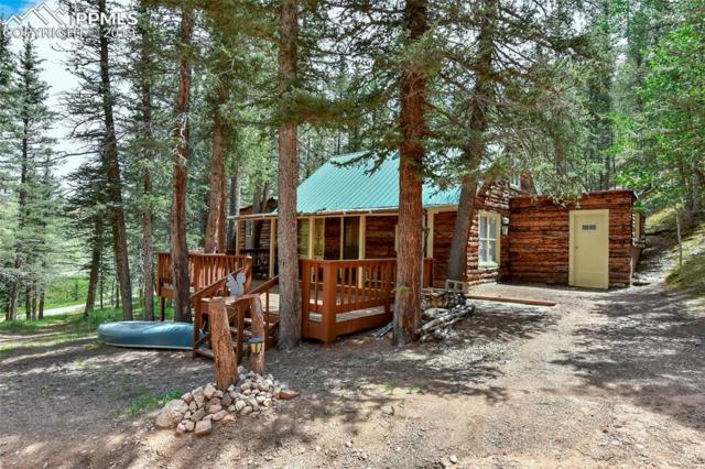 31 Being Verified Heights, Divide, CO 80814 (#6412114) :: The Peak Properties Group
