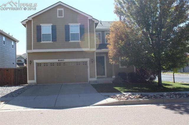 4803 Turning Leaf Way, Colorado Springs, CO 80922 (#6418709) :: 8z Real Estate