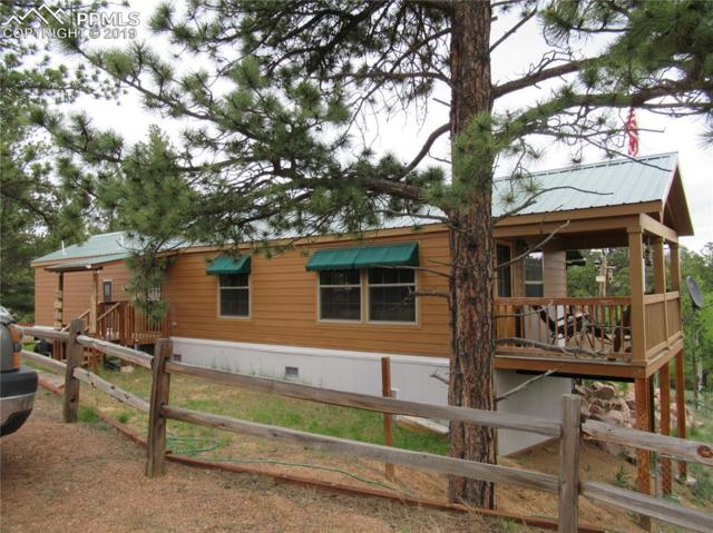 716 Badger Trail, Florissant, CO 80816 (#6418858) :: Action Team Realty