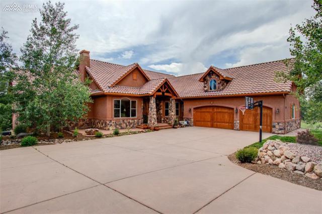 17895 Pioneer Crossing Circle, Colorado Springs, CO 80908 (#6424920) :: 8z Real Estate