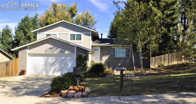 4570 Iron Horse Trail, Colorado Springs, CO 80917 (#6425619) :: CENTURY 21 Curbow Realty