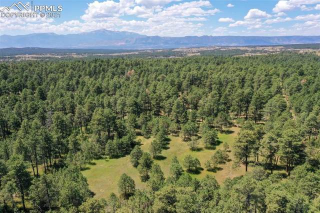 8075 Woodcrest Drive, Colorado Springs, CO 80908 (#6430696) :: Action Team Realty