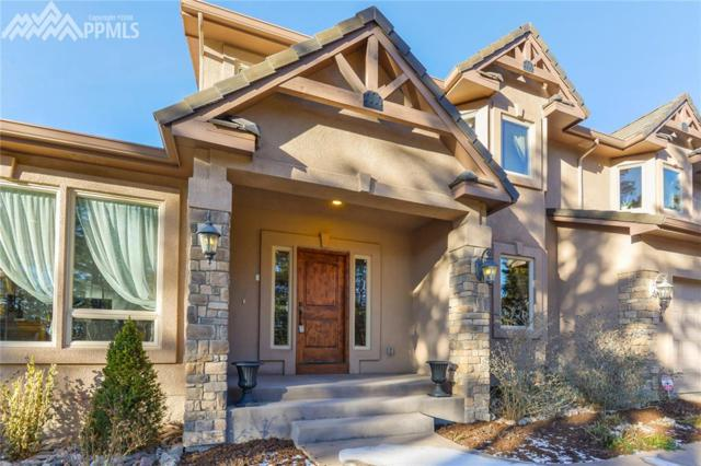 14470 Old Lasso Point, Colorado Springs, CO 80921 (#6431248) :: The Peak Properties Group
