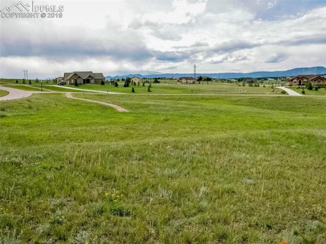19732 Royal Troon Drive, Monument, CO 80132 (#6432888) :: Harling Real Estate