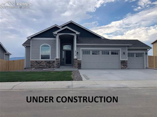 10241 Elgon Drive, Colorado Springs, CO 80924 (#6434972) :: Tommy Daly Home Team