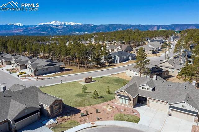 16482 Mountain Mist Drive, Monument, CO 80132 (#6435239) :: Action Team Realty