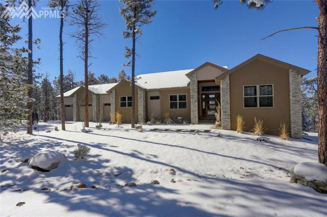 14860 Roller Coaster Road, Colorado Springs, CO 80921 (#6436626) :: The Hunstiger Team