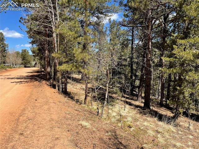 444 Timber Ridge Drive, Divide, CO 80814 (#6438179) :: Tommy Daly Home Team