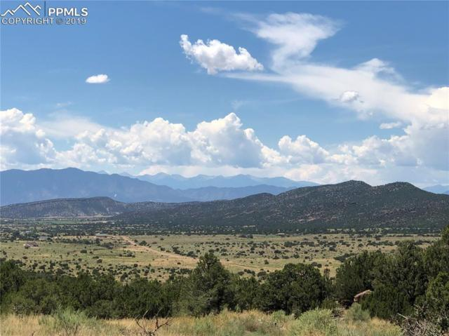 6650 County 132 Road, Penrose, CO 81240 (#6444957) :: Colorado Home Finder Realty
