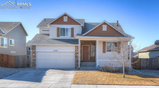 6239 Dancing Water Drive, Colorado Springs, CO 80911 (#6445529) :: Relevate Homes | Colorado Springs