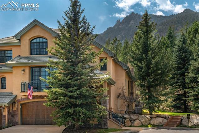 1275 Log Hollow Point, Colorado Springs, CO 80906 (#6449409) :: Fisk Team, RE/MAX Properties, Inc.