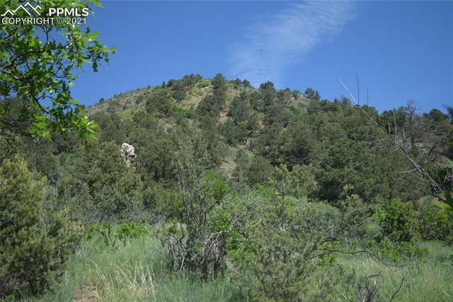 284 Crystal Park Road, Manitou Springs, CO 80829 (#6449800) :: Tommy Daly Home Team