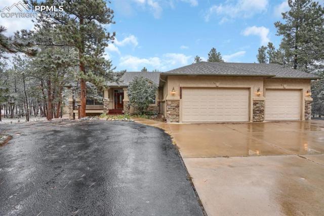 10875 Hat Creek Place, Colorado Springs, CO 80908 (#6451046) :: The Hunstiger Team