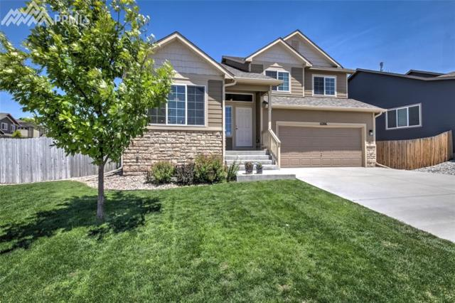 6206 Dancing Star Way, Colorado Springs, CO 80911 (#6457872) :: The Treasure Davis Team