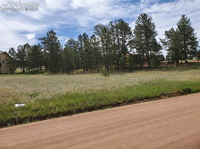 484 Due South Road, Florissant, CO 80816 (#6459048) :: Finch & Gable Real Estate Co.