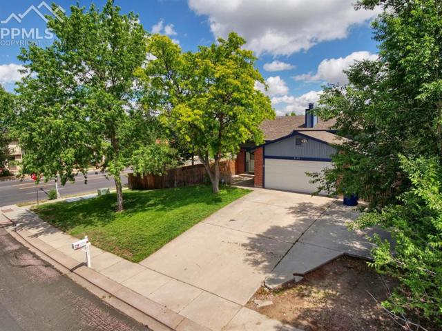 4302 E Eastcrest Circle, Colorado Springs, CO 80916 (#6462134) :: The Peak Properties Group