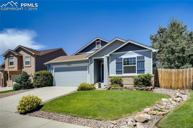 6834 Amber Ridge Drive, Colorado Springs, CO 80922 (#6467811) :: Action Team Realty