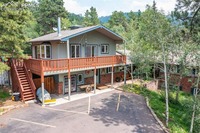 159 Trull Road, Woodland Park, CO 80863 (#6469061) :: Action Team Realty