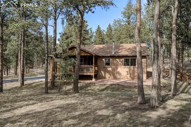 253 N Mountain Estates Road, Florissant, CO 80816 (#6473885) :: The Treasure Davis Team | eXp Realty