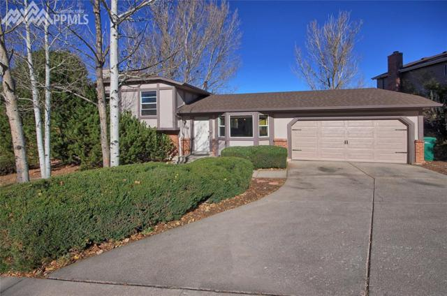 5514 E Old Farm Circle, Colorado Springs, CO 80917 (#6475785) :: The Peak Properties Group