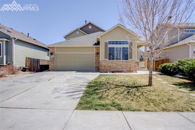 6333 Roundup Butte Street, Colorado Springs, CO 80925 (#6476550) :: 8z Real Estate