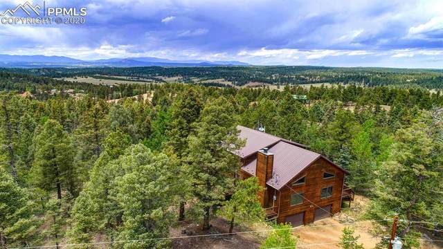 97 Wahsatch Road, Florissant, CO 80816 (#6476595) :: Tommy Daly Home Team