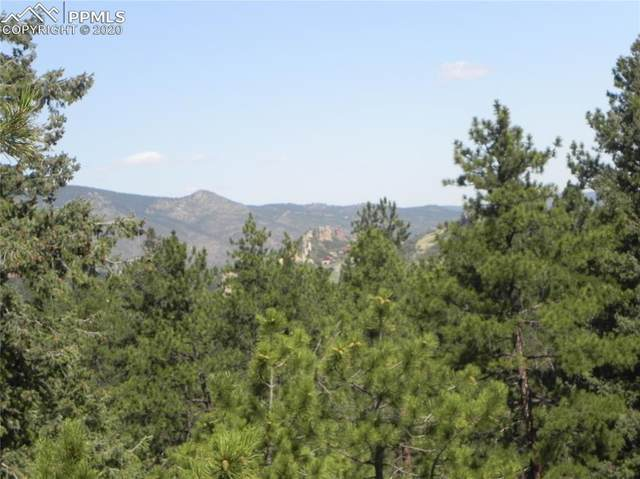 4900 Mohawk Drive, Larkspur, CO 80118 (#6477305) :: Finch & Gable Real Estate Co.