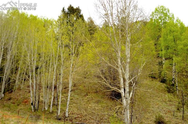 513 Last Dollar Drive, Cripple Creek, CO 80813 (#6478153) :: 8z Real Estate