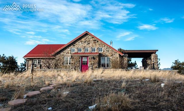 5798 County 116 Road, Lake George, CO 80827 (#6478401) :: 8z Real Estate