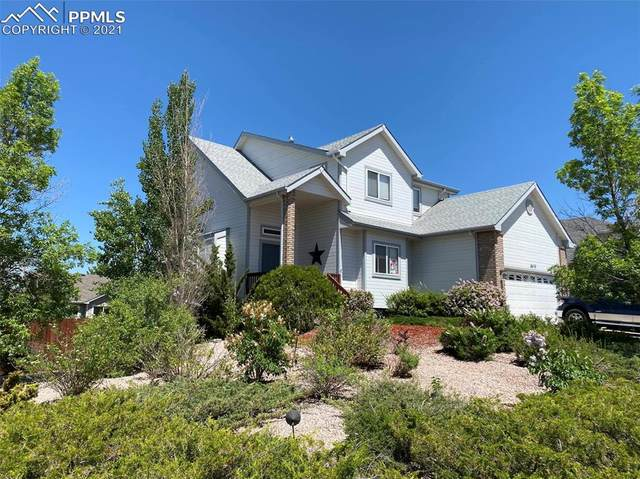 4610 Squirreltail Drive, Colorado Springs, CO 80920 (#6479368) :: Fisk Team, eXp Realty