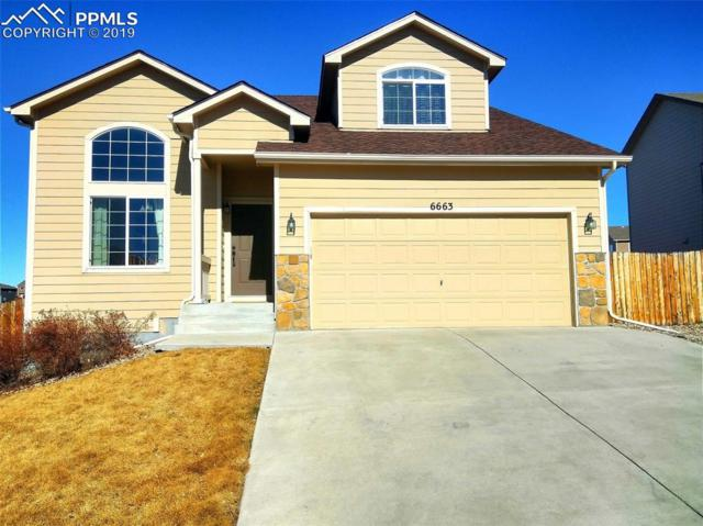 6663 Passing Sky Drive, Colorado Springs, CO 80911 (#6480275) :: 8z Real Estate