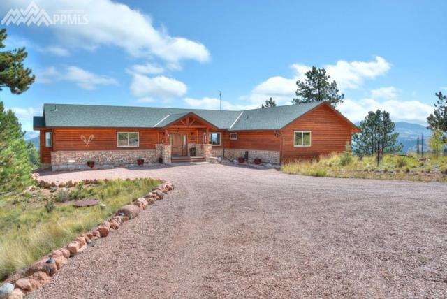 608 Elk Lane, Guffey, CO 80820 (#6490001) :: 8z Real Estate