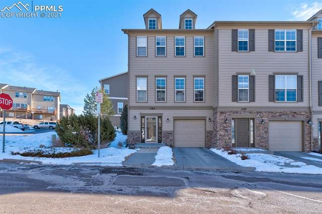 1103 Yellow Dogwood Heights, Monument, CO 80132 (#6493370) :: CC Signature Group